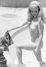 1960s Mickey Jines nude pinup in swimming pool 8 x 10 Photographs