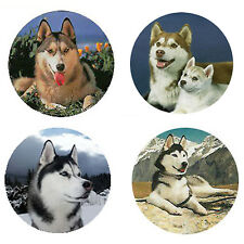 Siberian Husky Magnets: 4 Cool Huskies 4 your Fridge or Collection-A Great Gift