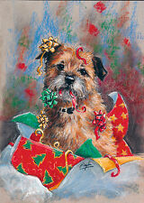 Border Terrier Dog, Christmas cards pack of 10 by Paul Doyle. C476X