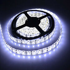 5M 3528 SMD Flexible Cool White 300led LED Fairy Strip Light + DC Female Jack