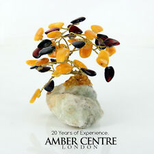 Amber Tree Bonsai Assorted Cognac and Butterscotch Amber tree   AT001 | RRP £60!
