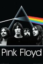 "Pink Floyd Music poster 24 x 36"" Dark Side of the Moon Group"