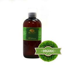 8 oz Premium Liquid Gold Pine Needle Essential Oil Organic Natural Aromatherapy