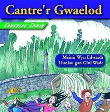 Cantre'r Gwaelod by Meinir Wyn Edwards (Paperback, 2007)