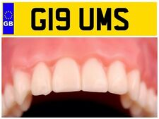 G19 UMS GUMS TEETH DENTIST DENTISTS DENTURE CLINIC NUMBER PLATE RANGE ROVER SUV