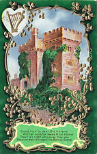 Good luck Ireland her Sons Kissed the Blarney Stone ST. PATRICK'S DAY Postcard