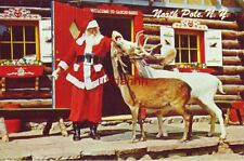 TWO OF SANTA'S DEER LOOKING FOR A HANDOUT AT THE NORTH POLE, NY. WORKSHOP