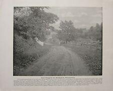 Impresión De 1898 + texto ~ Road junto a la Brandywine ~ Pennsylvania
