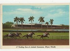 Thrilling Race at Hialeah Racecourse Miami Florida USA 1965 Postcard 128a