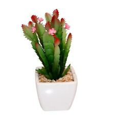 New 18x7cm Artificual Succulent in White Pot Realistic with Pebbles MQ-177F