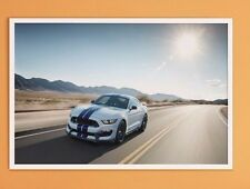 "SHELBY COBRA GT 350 MUSTANG FORD SVT  43"" x 24"" LARGE HD WALL POSTER PRINT NEW"