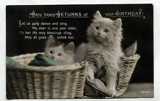 Vintage REAL PHOTO coloured postcard 2 Persian/Angora Kittens/Cats RPPC 1925