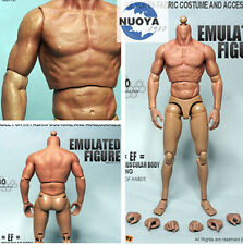 "12"" ZC TOYS Male Muscular Figure Body Thin Thigh For 1/6th Scale Man Head Sculpt"