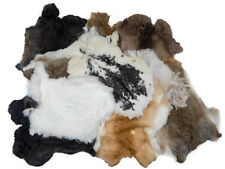 Assorted Natural color Rabbit Pelt Not Dyed Lot of 10 pelts
