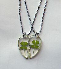 Real Four-Leaf Clover Couples Heart Necklace Good Lucky