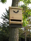 ^v^ BEST on EBAY- THE JUMBO KAVLAR lined BAT HOUSE PREDATOR GUARD