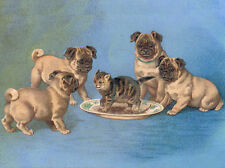 PUG CHARMING DOG GREETINGS NOTE CARD BEAUTIFUL PUPS PLAY WITH KITTEN IN SAUCER