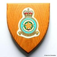 """RAF 31 Squadron """"The Goldstars"""" -Military Badge Plaque Shield- Royal Air Force"""