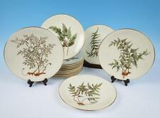 14 Royal Worcester c.1888 Botanical Named Fern Cabinet Plates Antique Porcelain