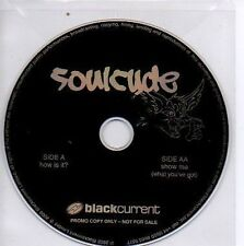 (N256) Soulcyde, Show Me / How Is It? - DJ CD