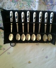 Vintage Set 8 Stainless steel Porcelain Spoons Roses Velvet Holder Beautiful