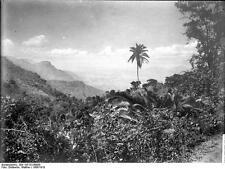 German East Africa Burundi Rwanda Tanzania Landscape Jungle 1906 5x4 Inch Photo