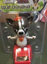 Solar Chihuahua Dog Bobble Head Big Ears Eyes Tiny Hat Dad Toy Rescue Cute