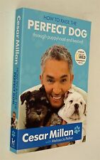 How to Raise the New Perfect Dog by Cesar Millan The Dog Whisperer Training New