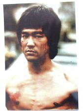 PHOTO COLLECTION BRUCE LEE N°  124 - PROMO PHOTO BRUCE LEE