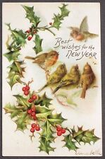 5 Cute Little Birds on a Holly Branch New Year embossed postcard 1909