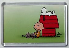 CHARLIE BROWN AND SNOOPY FRIDGE MAGNET-  RETRO -FREE Postage
