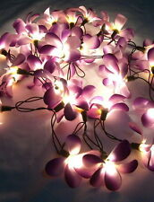 35 FLOWER FRANGIPANI IN/OUTDOOR STRING, FAIRY LIGHTS *CHOOSE FROM **6 COLORS**