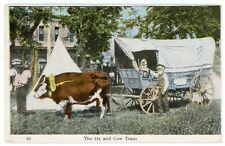 Postcard - Ezra Meeker at Camp in Kearney, Nebraska w/Oxen Dave & Cow - 1906-08