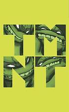 TEENAGE MUTANT NINJA TURTLES VOL #1 BOX SET TPB Collects Vol #1-5 IDW Comics TP