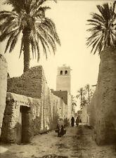 Photo Prouho Argentique Biskra Algérie Vers 1900