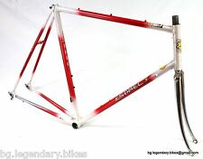 VINTAGE Race bike Frame Set Somec Italian Made Lugged Steel engraved