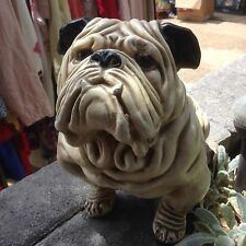 Antique Chalk English Bulldog in natural size
