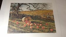 """Limited edition art print """"Apple Basket"""" Mint  artist David Armstrong 17.5x24.in"""