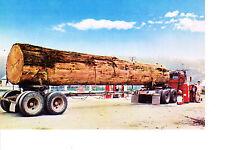 Large Logging Truck  1960s  Redwood Highway , CA