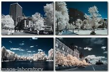 ALL 12 Mp Olympus E-PM1 PL1 PL2 IR conversion service Infrared or Full Spectrum