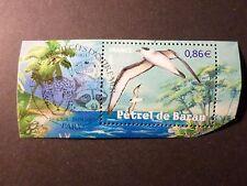 FRANCE 2007, timbre 4036, OISEAU PETREL BARAU oblitéré 1° JOUR, BIRDS, FDC stamp