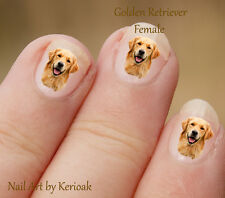 Golden Retriever, Female Portrait,  24 Dog Nail Art Stickers Decals