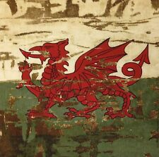TEX EX ORIGINAL CYMRU ANTIQUE WELSH FLAG CUSHION PANEL WALES DRAGON COTTON