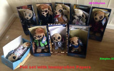 Complete / Full Set Of 9 Compare the Market Meerkat ~ Agent Maiya Immigration