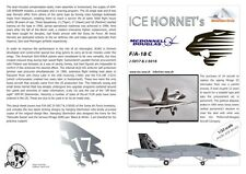 Materhorn circle Ice Hornets 32008A    FA-18c & D mirage hawker hunter Decals