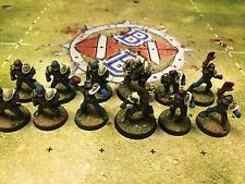 Blood Bowl Painted Human Team With Star Players