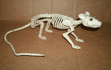 1/1 Scale Life Size Rat Skeleton Prop  18 Inch Rodent Bones Halloween Decoration