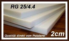Schaumstoff Platte Schaumstoffplatte RG25 200x120x2 cm
