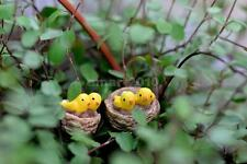 10pcs Bonsai Dollhouse DIY Fairy Garden Ornament Landscape Yellow Bird Decor