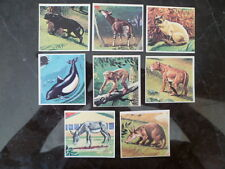 Lot de 9 figurines PANINI - Super ZOO 1977  (43-68-70-95-116-120-181-271-278)